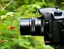35mm_kaugusp.jpg